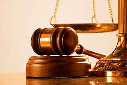 Santa Clarita Law Freq Legal Services offers expert service in Family Law Matters and Family Law Assistance for local residents of the Santa Clarita Valley, San Fernando Valley and Antelope Valley, California. Contact us for your family law needs, we can offer all the proper documentation and guidance needed to resolve your issue in Family Law and Divorce Law Matters.